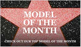 Model of the Month