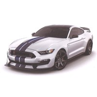Ford Mustang Shelby GT350R - White 1:43