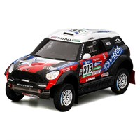 TrueScale Miniatures Mini All4 Racing - 2016 Dakar Rally - #313 1:43