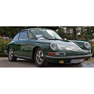 TrueScale Miniatures Porsche 911 1964 - Irish Green 1:12