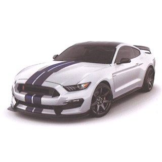 TrueScale Miniatures Ford Mustang Shelby GT350R - White 1:43